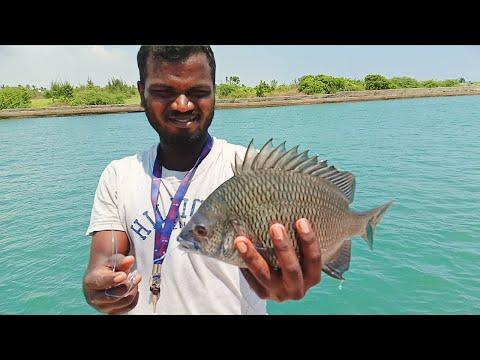 SNAPPER & BLACK BREAM Inshore - Traditional Hand Line Fishing