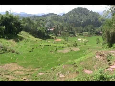 Tana Toraja - Toraja Land - Visit Toraja Land - South Sulawesi (Celebes) Travel Guide - Indonesia