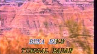 Jos Ginsos--Ayam Piara( KARAOKE) -JUARA SINDING