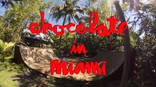 Chocolate Skateboards in Miami