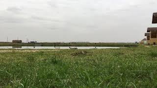 Частный пруд платная рыбалка местным жителям вход запрещён