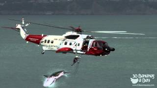 Shark Attack caught on tape by military helicopter camera : real or fake?