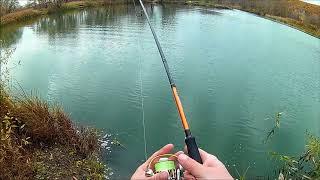 Ловля окуня и щуки в ноябре.  Каролина спасает рыбалку.