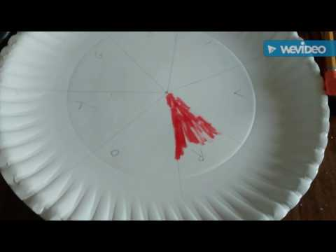 Make a Spinning Plate