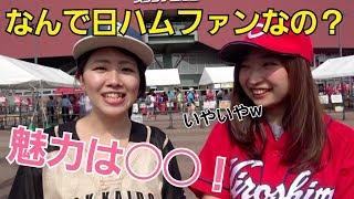 チャンネル登録よろしく!!! 北海道日本ハムファイターズのファンの方...