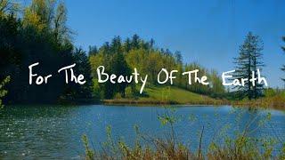 For The Beauty | Brian Doerksen | Official Lyric Video
