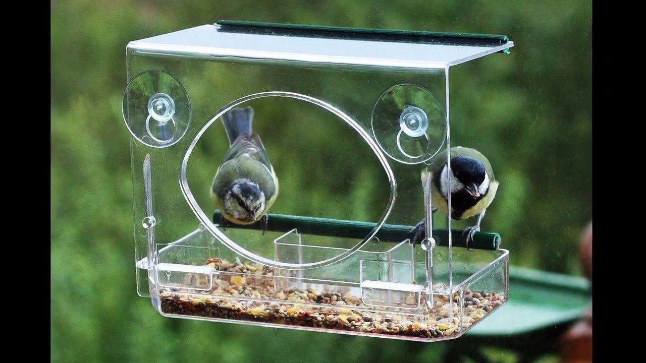 Window bird house - Window Bird Feeder By Garden Utopia