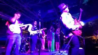 Mike Scott - Insane Purple Guitar Solo (Prince Tribute)