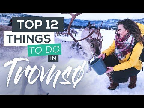 Top 12 Things to do in Tromsø in Winter