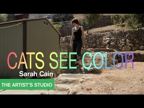 Sarah Cain - The Artist's Studio - MOCAtv