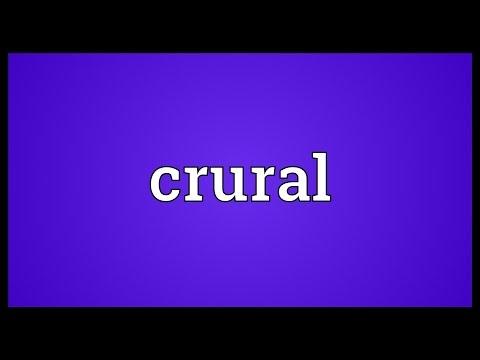 Header of crural
