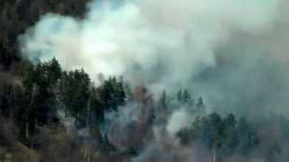 """Nehoiu-04.04.2012 orele 14:45 (Incendiul de pădure din zona """"Arsele""""- Podul Zmeului)"""