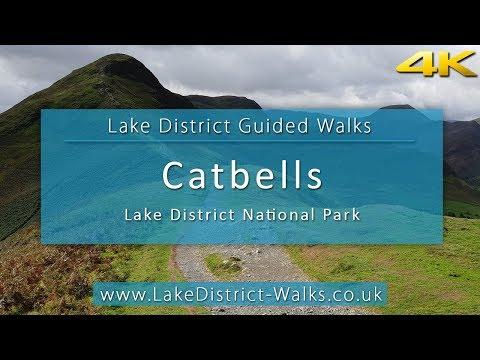 Lake District Guided Walks: Cat Bells