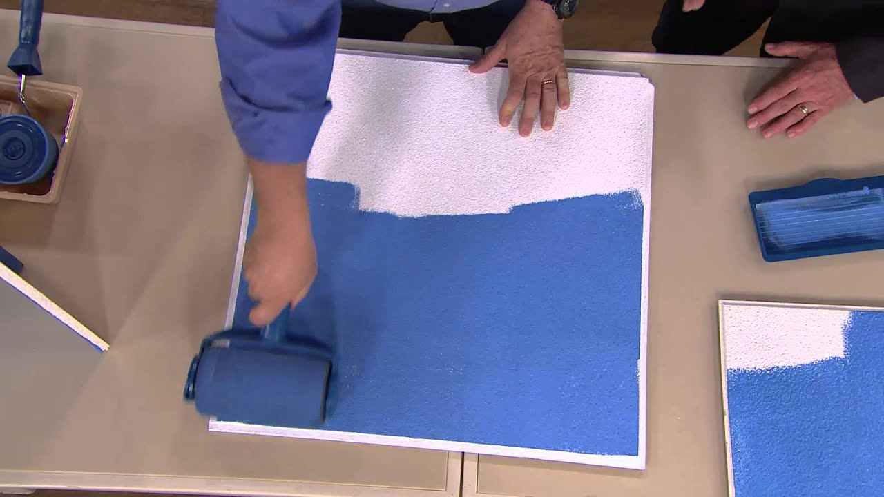 Paint Runner Home Painting & Edging System with Dan Hughes