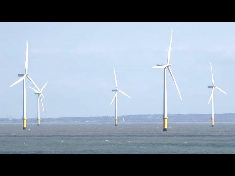 Wind Power Insurance