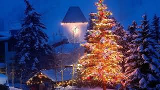 Beautiful Purple Christmas Lights