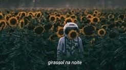 Vampire Weekend feat. Steve Lacy - Sunflower (Legendado/Tradução)