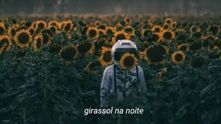 Vampire Weekend feat. Steve Lacy - Sunflower (Legendado/Tradução) Video