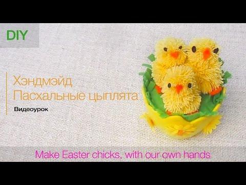 Как сделать цыплят,