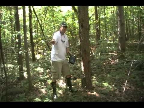 Primos truth cam 35 camera walmart. Com.