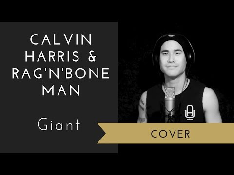 Calvin Harris, Rag'n'Bone Man - Giant (Cover)