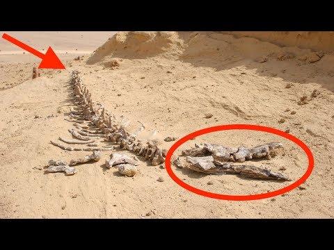 7 Mind-Boggling Sahara Desert Discoveries