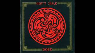 Gov't Mule - Larger than Life