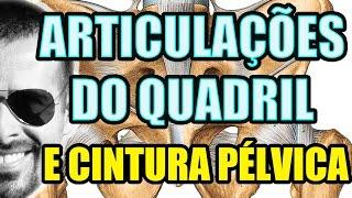 Vídeo Aula 115 - Anatomia Humana - Sistema Articular - Articulações do Quadril e da Cintura Pélvica