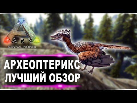 Археоптерикс (Archaeopteryx) в АРК. Лучший обзор: приручение, разведение и способности  в ark