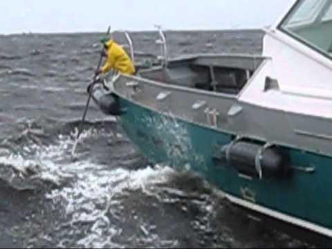 surfers olympia  crew boat bourbon malongo