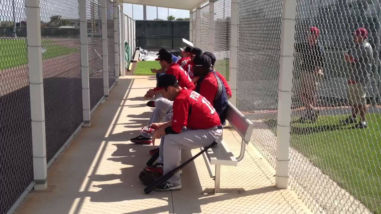David Ortiz Dustin Pedroia funny moment on bench