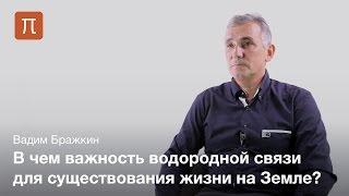 Водородная связь и жидкости на Земле — Вадим Бражкин