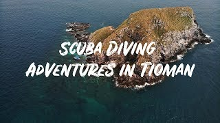 Scuba Diving Adventures in Tioman Island in 4K!