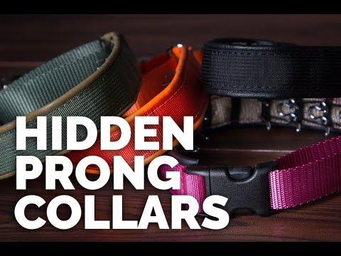 New Keeper Collars Hidden Prong Collars