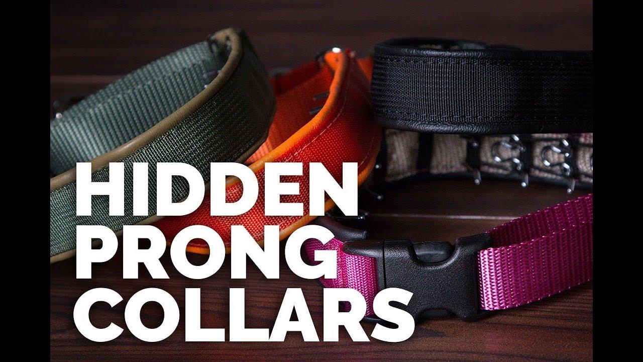 Hidden Prong Dog Collars