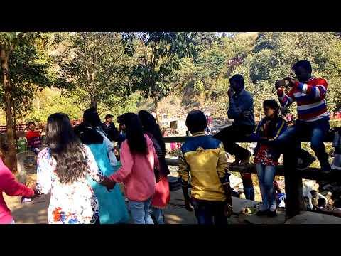 hirni fall picnic party dance