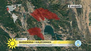 """Bränderna i Kalifornien: """"Det påverkar alla otroligt hårt"""" - Nyhetsmorgon (TV4)"""