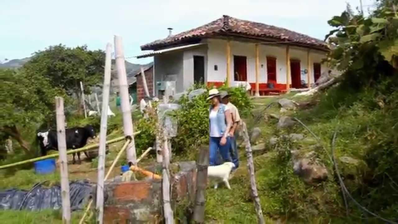 Don fabio hizo de su finca su empresa escuela de campo cap tulo completo youtube - Escuela de hosteleria casa de campo ...