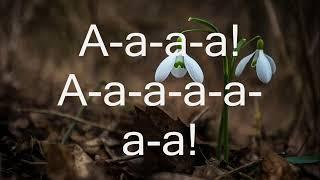 Подснежники. (Христианская песня. Караоке) (Snowdrops.)