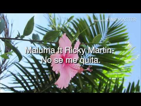 maluma-ft-ricky-martin--no-se-me-quita(lyrics-video)