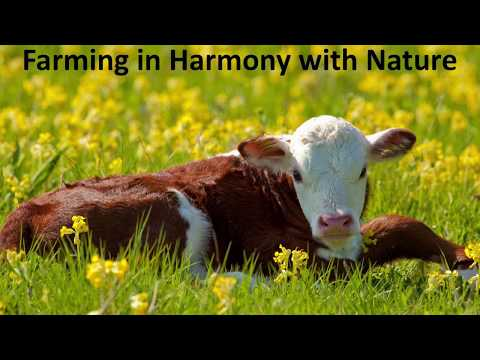Farming in Harmony with Nature | Harmony Conference 2017