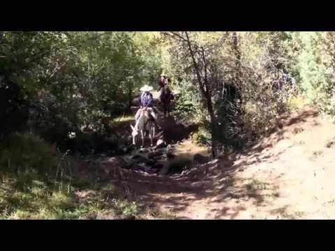 Old Spanish Trail Trailer 03