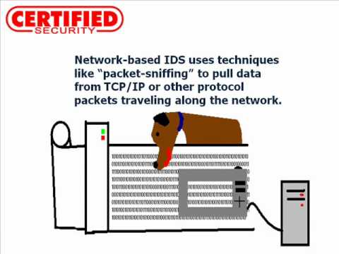 An Introduction to Network Intrusion Detection Systems