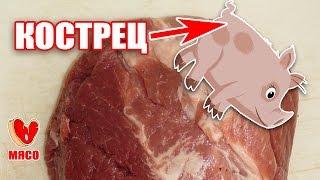 Кострец. Сочное и постное мясо - идеальное мясо для шашлыка.