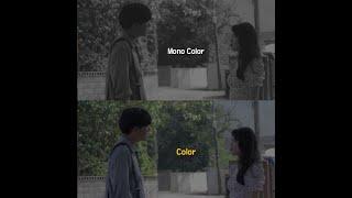[ 몽돌옴니버스 ] 흑백영화 vs 컬러영화