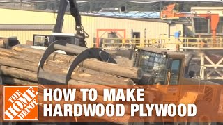Hardwood Plywood-how It's Made