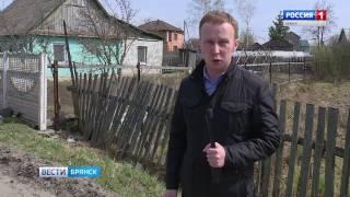 В Брянске  судят банду оружейников