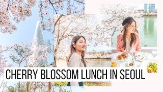 Lunch Amongst the Cherry Blossoms + Lotte World Mall | SNU Study Abroad | Korea Vlog #32