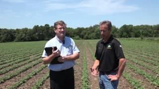 SoilBiotics interviewing John Purdy with Purdy Organic Farms in Roseville, IL