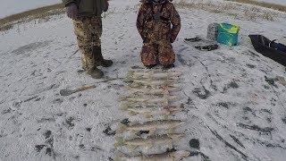 Астана Казахстан|Рыбалка на озере Кайнар|Первый лед|Рыбалка на жерлицы!!!